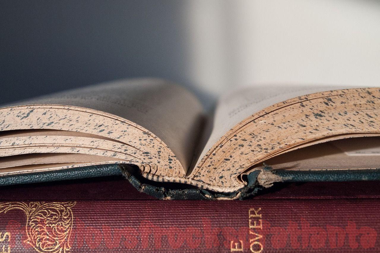 Law Essay and Regulation Essay – Basic Advice